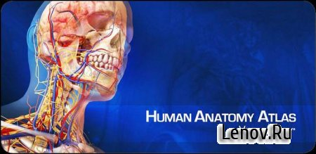 Human Anatomy Atlas (обновлено v 7.4.03) (Patched)