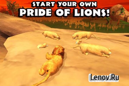 Safari Simulator: Lion v 1.0