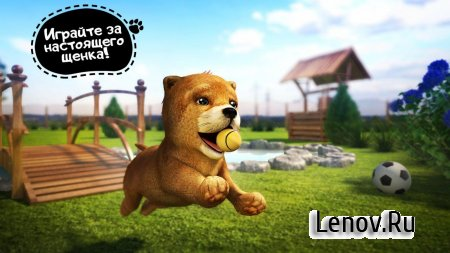 Dog Simulator (обновлено v 2.2.3) (Mod Money/Ads-Free)