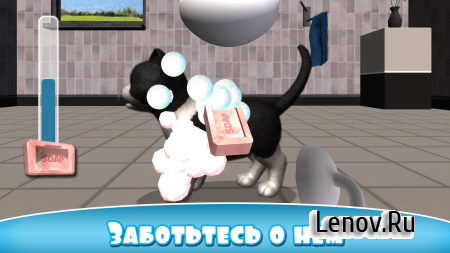Daily Kitten : virtual cat pet v 3.4 (Mod Money/Ad-Free)