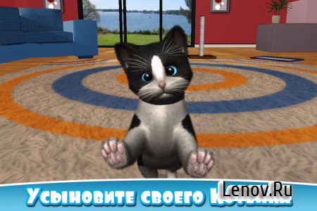 Daily Kitten : virtual cat pet v 3.4 (Mod Money/Ad-Free)