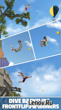 Flip Diving v 2.9.11 (Mod Money)