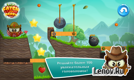 Catch My Berry: Physics Puzzle v 1.3 (Mod Money)