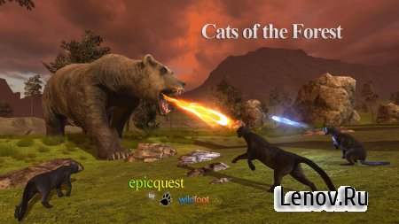 Cats of the Forest v 1.0