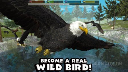 Ultimate Bird Simulator v 1.3 Mod (Unlocked)