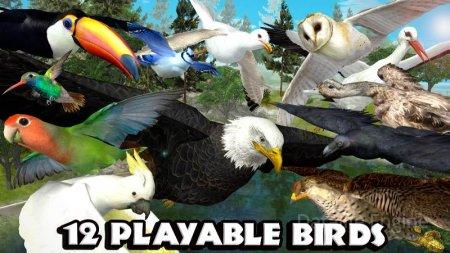 Ultimate Bird Simulator v 1.3 Mod (Unlocked)