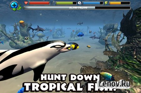 Dolphin Simulator v 1.1 Мод (a large amount of experience)