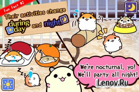 HamsterCollection◆Freegame v 2.5.0 (Unlimited Seeds/Gold Seeds)