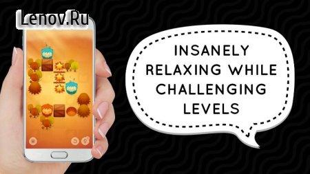 WTF?! Relaxing Brain Game (обновлено v 1.0.13) (Mod Hints/Unlocked)