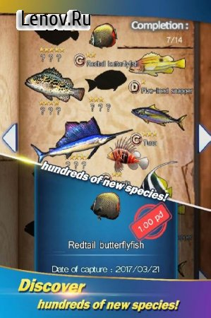 Fishing - Catch hungry shark v 3.0 Мод (Max Diamonds/Gold)