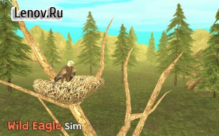 Wild Eagle Sim 3D v 1.0 (Mod Money)
