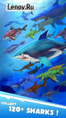 Hungry Shark Heroes v 2.9 Мод (много денег)