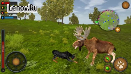Dog Survival Simulator v 1.0 (Mod Money)
