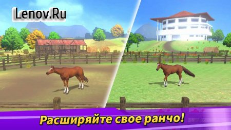 Derby Life v 1.8.55 Mod (You can get rewards without watching ads)